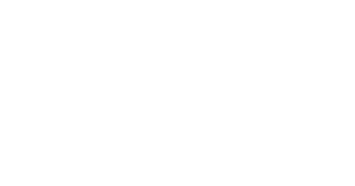 45. It's the People that Matter. Finding Suitable Employment for Immigrants